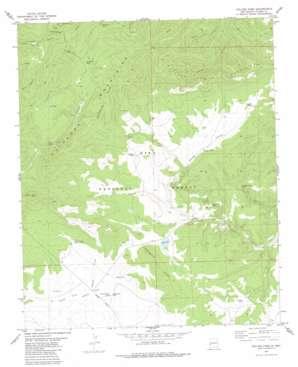 Collins Park topo map