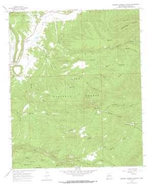 Squirrel Springs Canyon topo map
