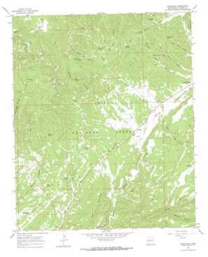 Cruzville topo map
