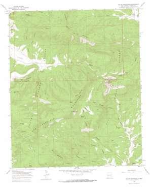 Dillon Mountain topo map