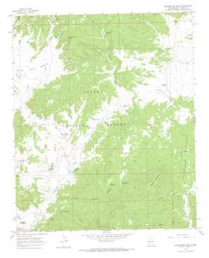 Centerfire Bog topo map