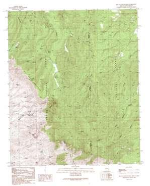 Big Lue Mountains topo map