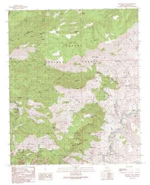 Mitchell Peak topo map