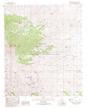 Beargrass Basin topo map