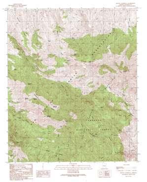 Mount Turnbull topo map