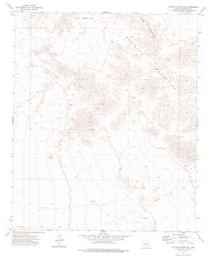 Cotton Center Se topo map