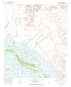 Citrus Valley East topo map