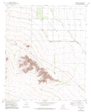 Mobile Nw topo map