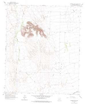Baragan Mountain topo map