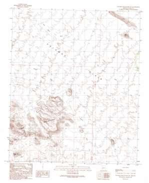 Palomas Mountains Ne topo map