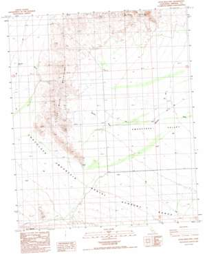 Little Mule Mountains topo map