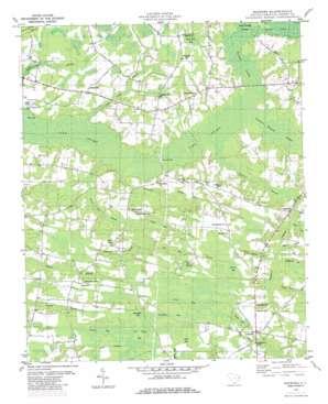 Bayboro topo map