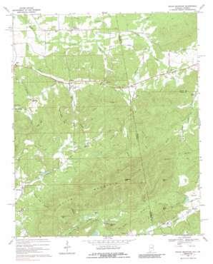 Indian Mountain topo map