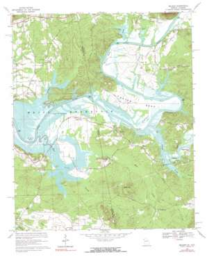 Melson topo map