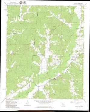 Detroit topo map