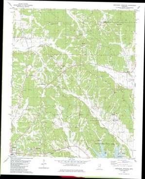 Northeast Pontotoc topo map