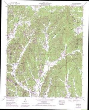 Altitude topo map