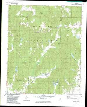 Whitten Town topo map