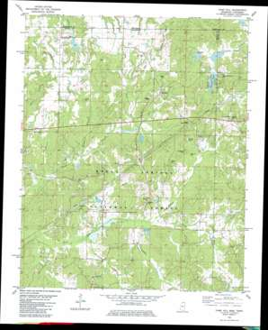Camp Hill topo map