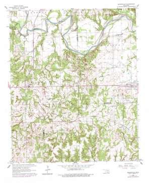 Mannsville topo map