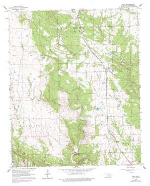 Troy topo map