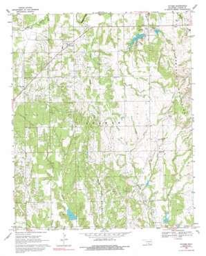 Tatums topo map
