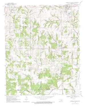 Elmore City South topo map