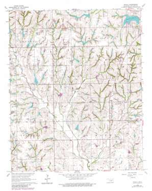 Stealy topo map