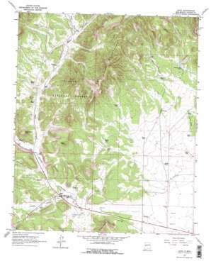 Datil topo map