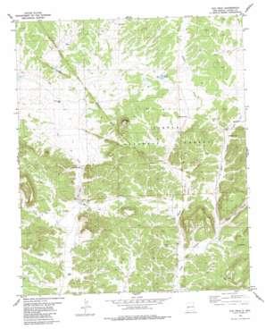 Cox Peak topo map