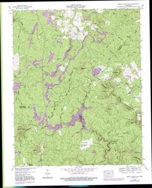 Smartt Mountain topo map