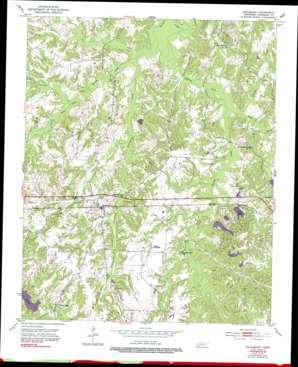 Saulsbury topo map