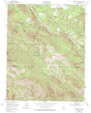 Burnett Peak topo map