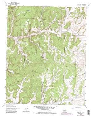 Pine Lake topo map