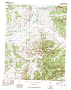 Blanco topo map