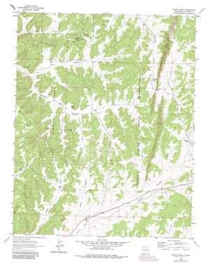 Bixler Ranch topo map