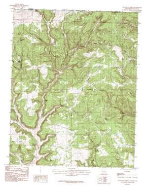 Anastacio Spring topo map