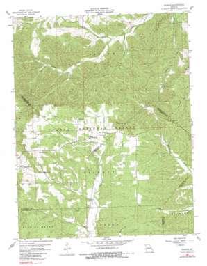Womack topo map