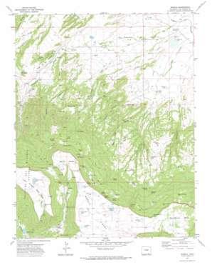 Barela topo map