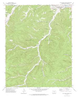 Little Pine Canyon topo map
