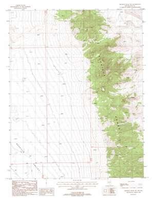 Reveille Peak Nw topo map