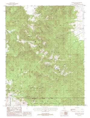 Kawich Peak topo map