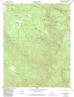 Buckhorn Peak topo map