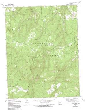 Antone Spring topo map