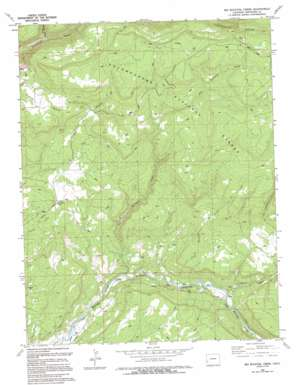 Big Bucktail Creek topo map
