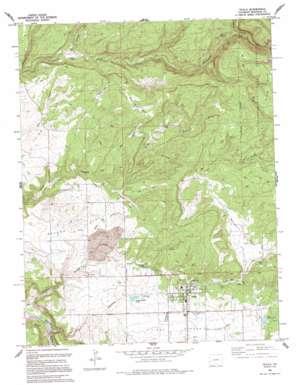 Nucla topo map