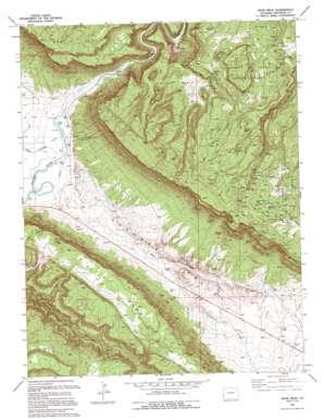 Davis Mesa topo map
