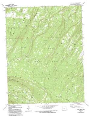 Moore Mesa topo map