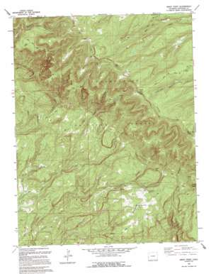 Windy Point topo map