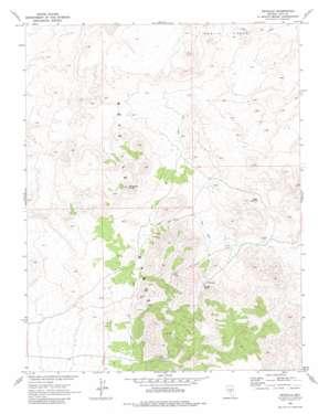 Reveille topo map